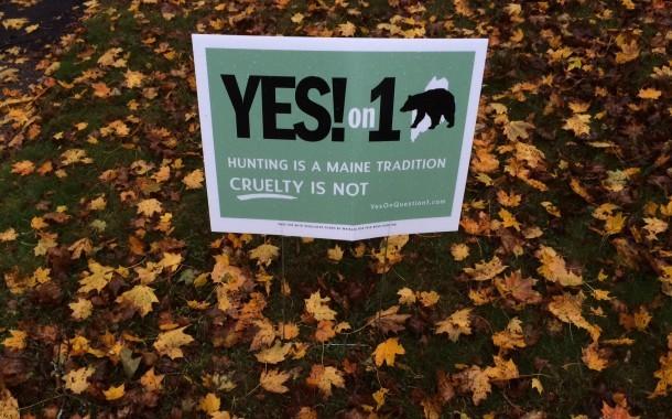 Letters on Bear Referendum (Question 1)