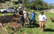 Harbor View Park Planting Day