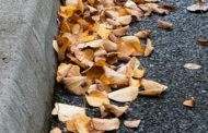 Leaves In Bags, Please - Curbside Leaf Collection Begins