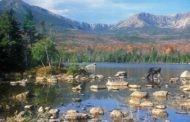 Protecting Land Along the Appalachian Trail - Peloton Posts