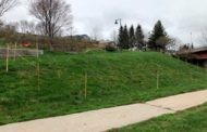 Harbor View Park Spring 2020 Updates