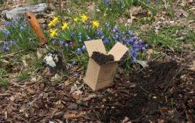 Lead in Portland's Soils - Free tests for gardeners