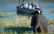 Travel Namibia and Botswan-AH! Adventure Travel with Nancy Dorrans