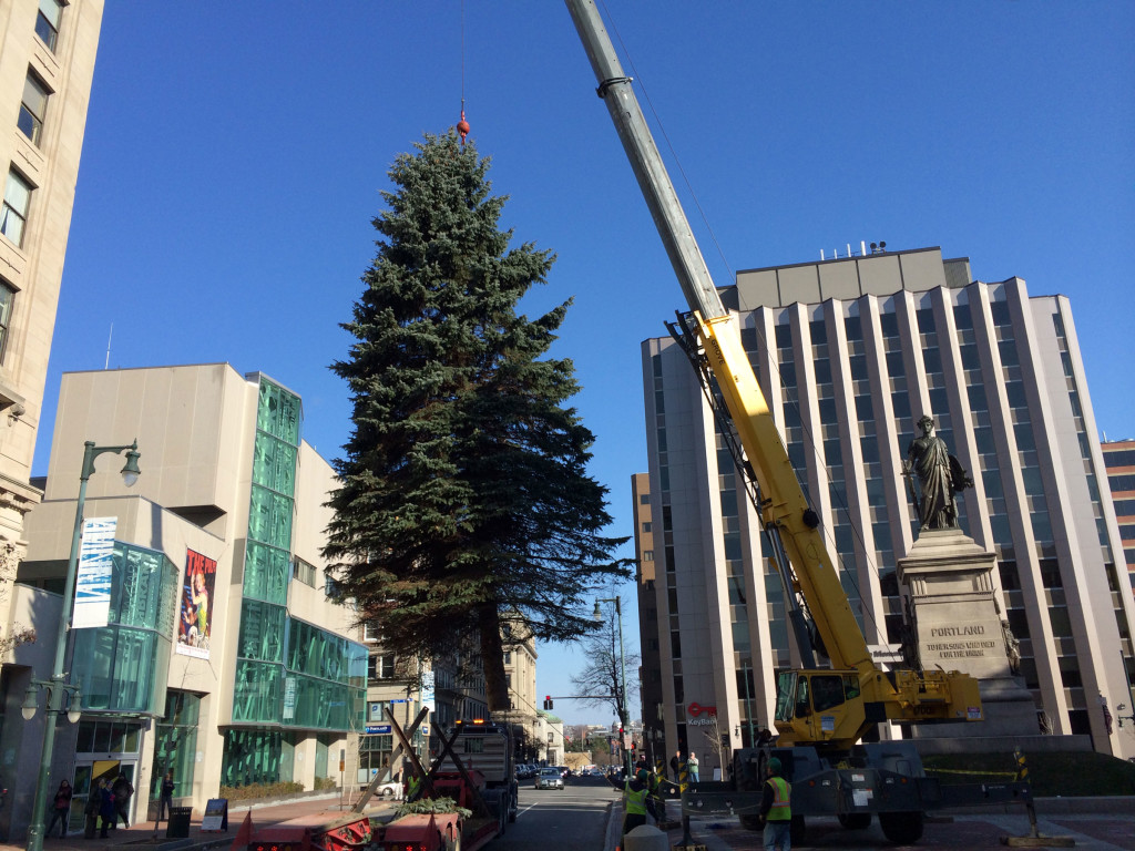Tree-Lifted-at-Square
