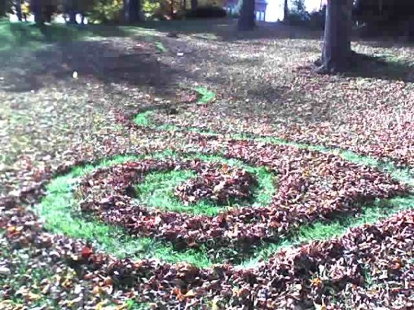 """""""Leaves and Grass Spiral"""" by Asher Platts"""