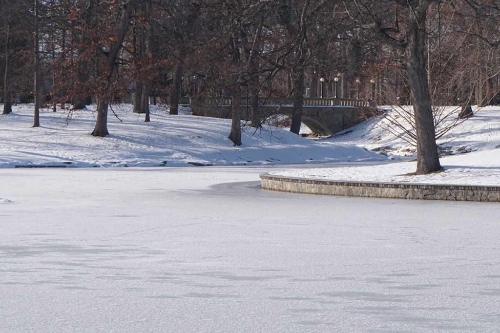 Deering Oaks Ice Pond