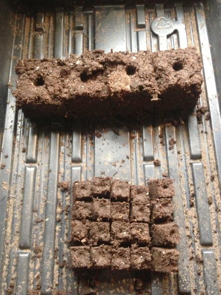 West End News: Amos Farm: Seed starting: seed blocks