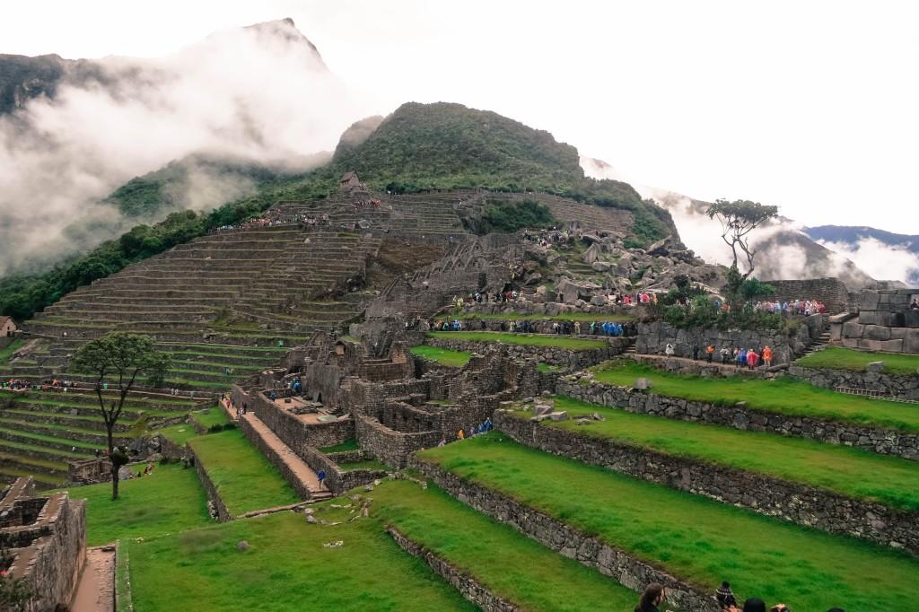 West End News, Intensive Gardening, Machu Picchu