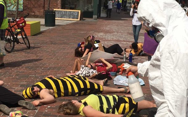 Debunking Colony Collapse Disorder