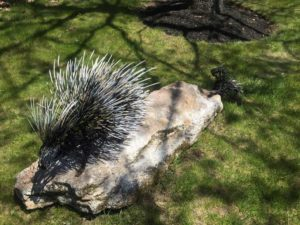West End News; Replaced porcupine statue