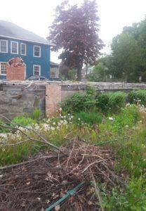 West End News: Noyes Fire: Brush pile