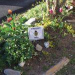 West End News: Portland Pesticide Ordinance: Bee safe yard sign