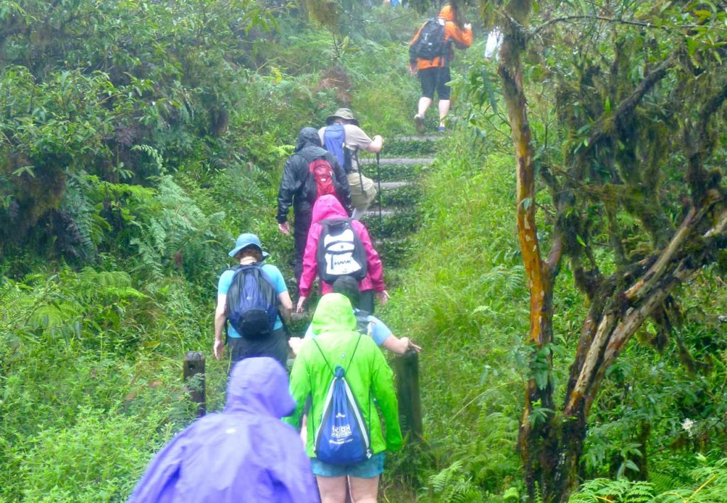 West End News - Travel Adviser - Galapagos hike