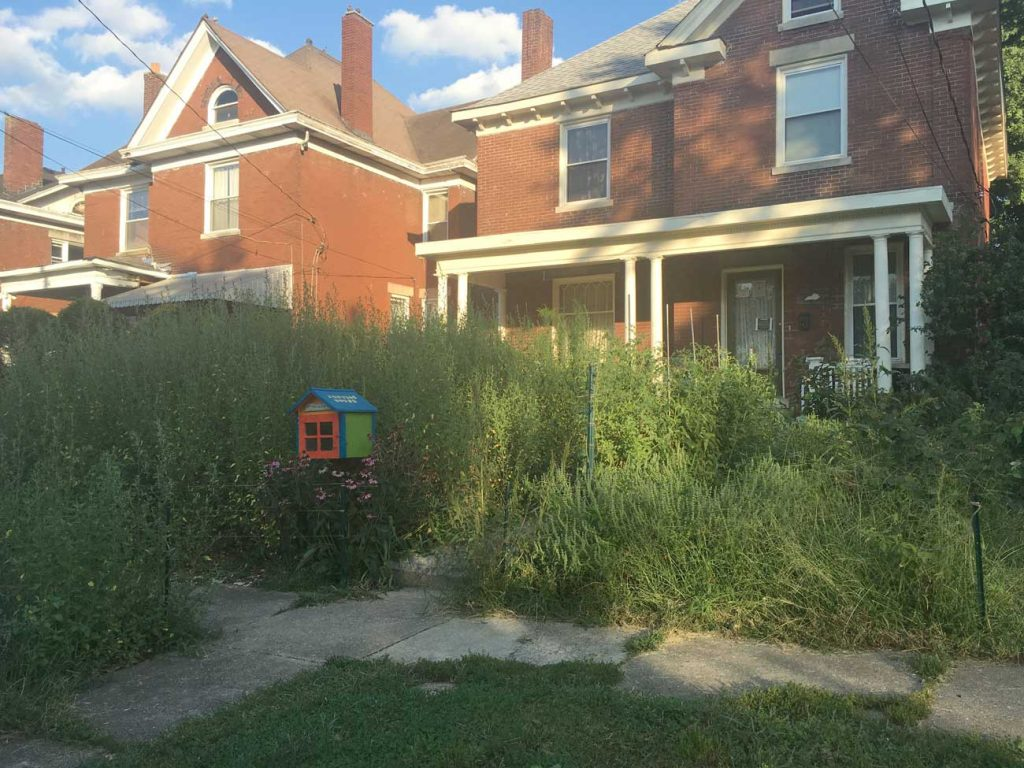 West End News - Season's End - Cover (Weeds) in front lawn