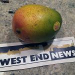 West End News _ Mexico mango