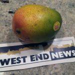 West End News _ Mexico mango