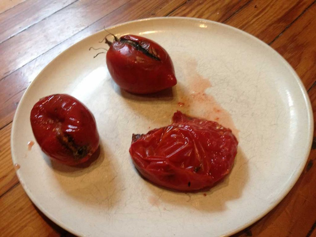 West End News - Seed Saving - Overripe tomato