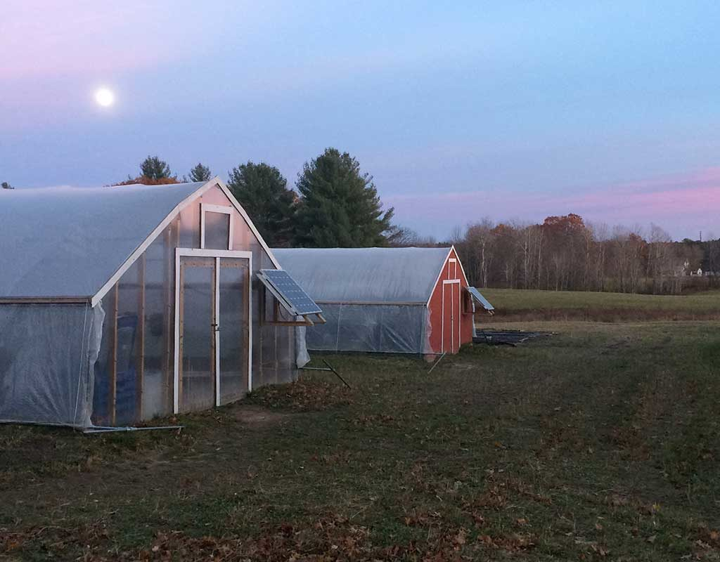 West End News - Replenova Farm - Greenhouses