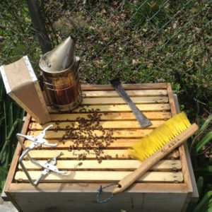 West End News - Keeping Bees - Hive and tools