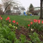 West End News - West End Parks - Flowers