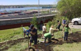 Harbor View Park Spring Planting 2018
