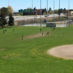 West End News - Pesticide ordinance - Deering Oaks Park athletic field