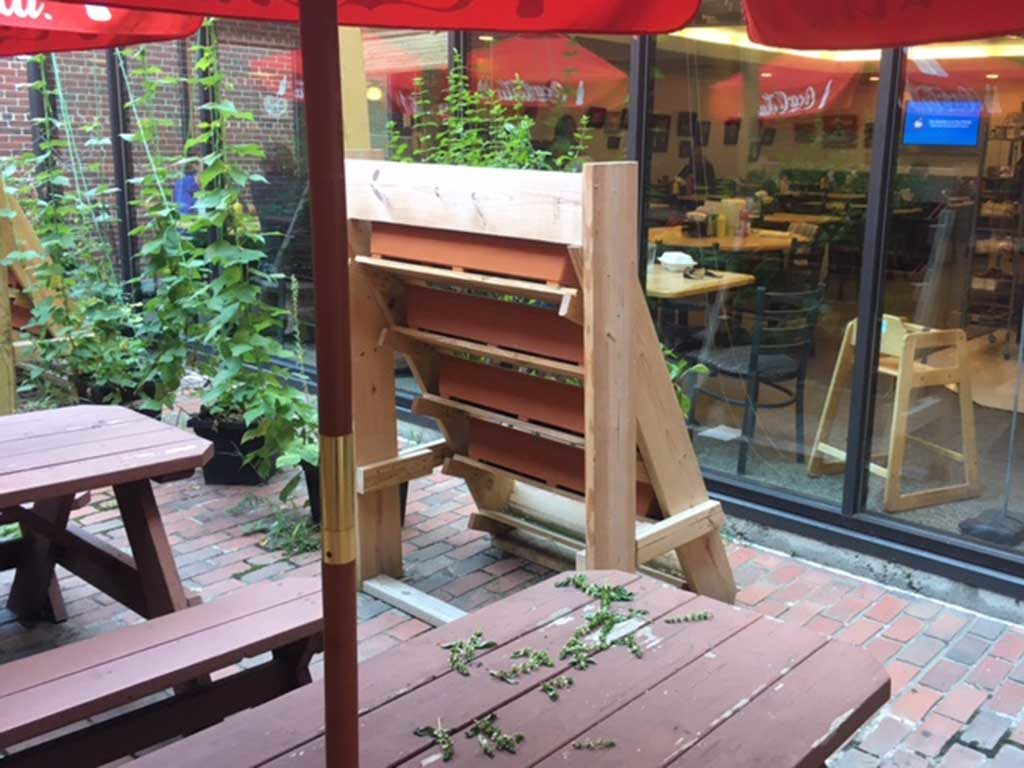 West ENd News _ Pavilion Grill - Outdoor Seating view 2