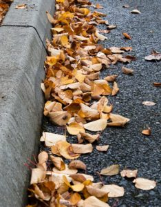 West End News - Curbside leaf