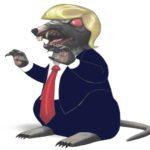 Rats!!!
