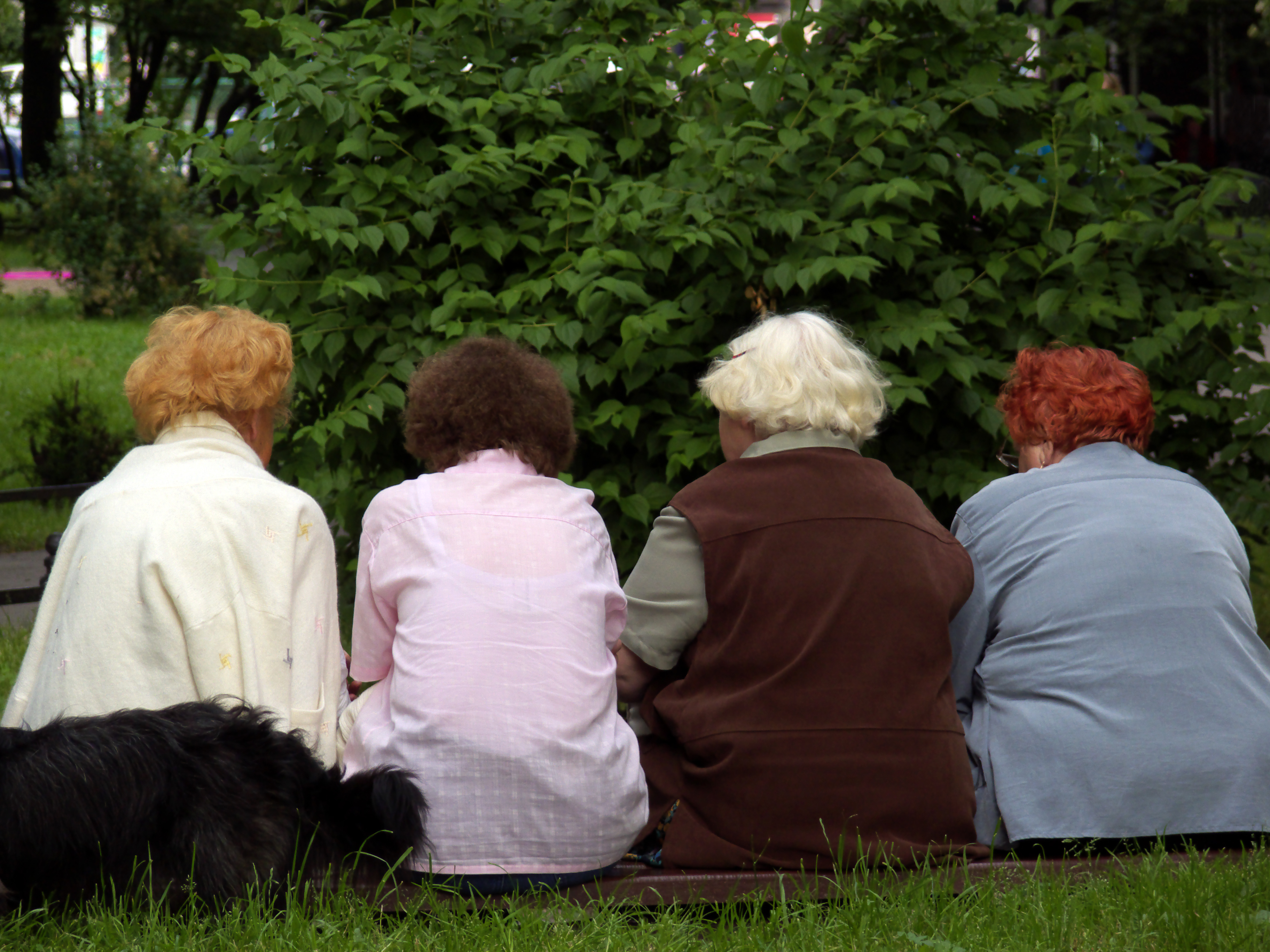 The Importance of Community for Older Adults - The West ...