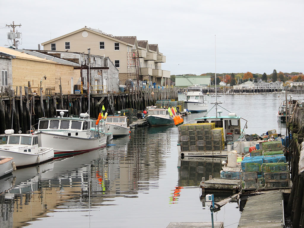 West End News - Wharf Portland Maine by Emilia Scheemaker 2015