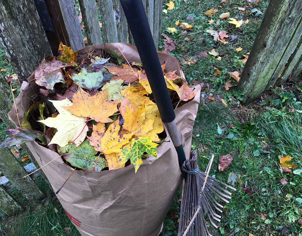 West End News - Leaf collection - bagged leaves and rake