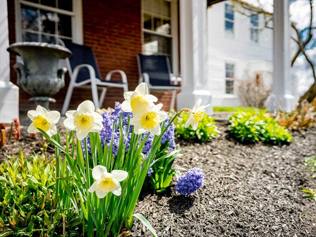 Benchmark Real Estate - 5 tips for prepping your house to sell in the Spring market