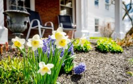 Prepping your House to Sell in the Spring Market