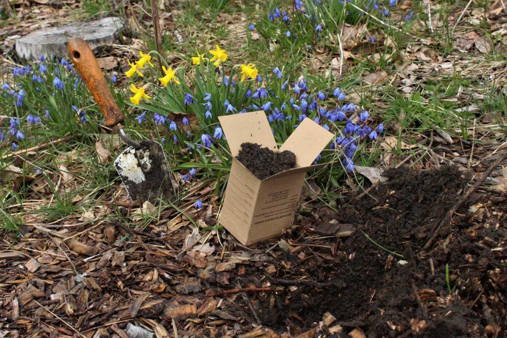 West End News - Soil Lead awareness - garden test sample