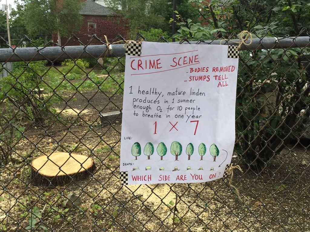 West End News - 'Crime Scene' sign at linden tree cutting that spurred heritage tree ordinance
