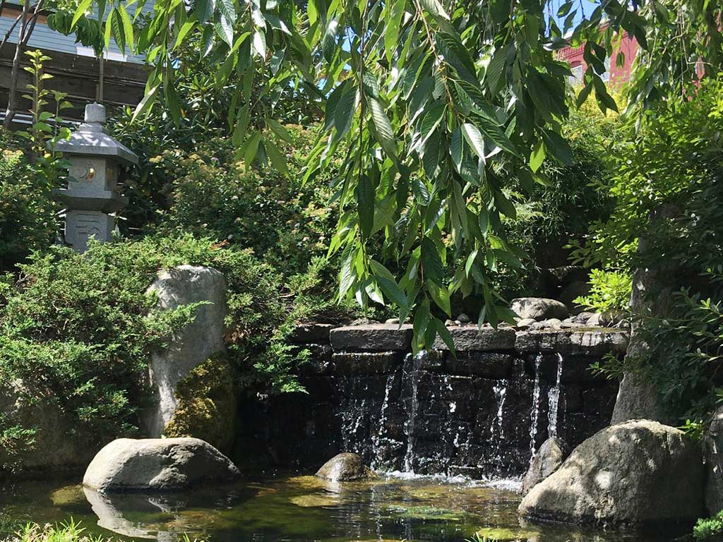West End News - Yosaku water garden - By James Fereira