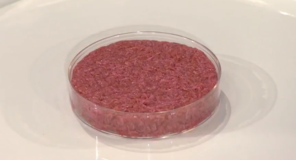 West End News - Cultured meat - the first cultured hamburger by World Economic Forum