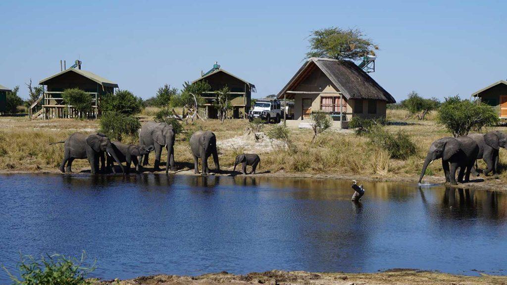 Elephant Sands bush camp in North Eastern Botswana